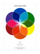 Colour Rose Poster - Laminated